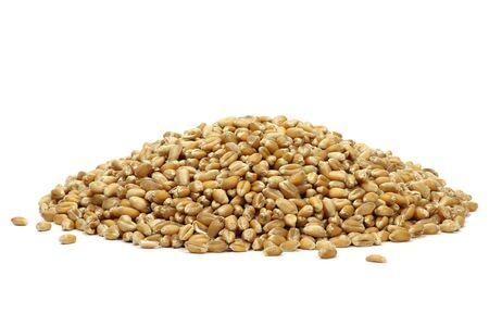 spelt: Spelt grains isolated on white background Stock Photo