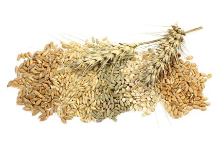 Assortiment de différentes céréales sur fond blanc Banque d'images - 52605712