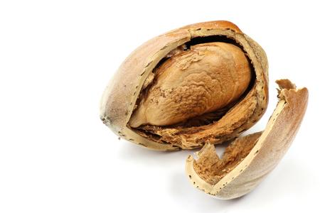mellowness: cracked hazelnut isolated on white background