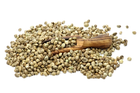 wooden scoop: hemp seeds with wooden scoop Stock Photo