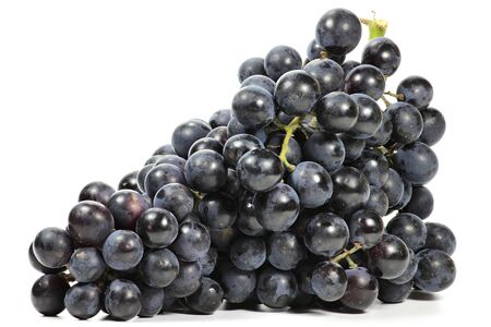 bleu: grapes variety Muscat Bleu isolated on white background