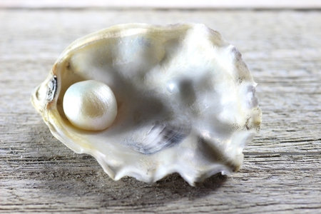 embedded: pearl embedded in oyster on wooden background Stock Photo