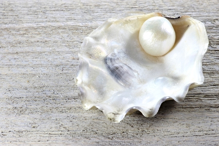 pearl embedded in oyster on wooden background Stock Photo