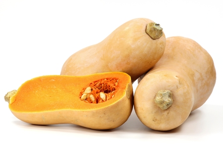 mellowness: butternut squash isolated on white background