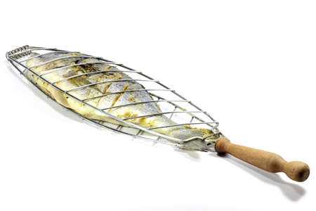 edible fish: gilthead seabream in fish basket isolated on white background