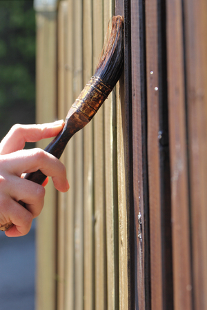 refurbish: new paint for the wooden garden fence