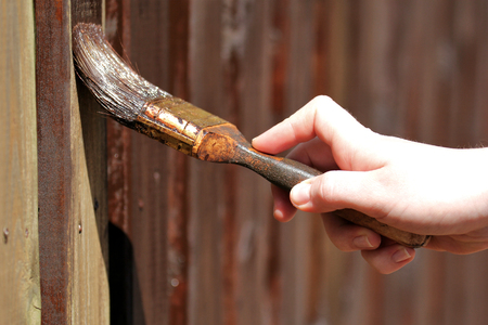 new paint for the wooden garden fence
