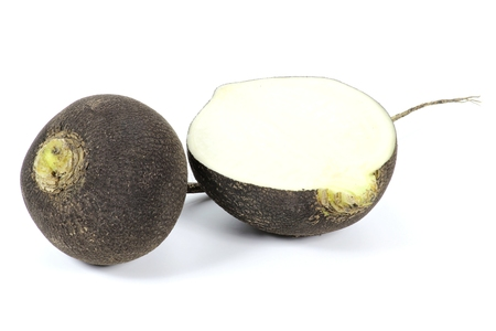 mellowness: black radish isolated on white background