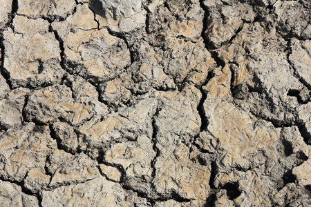 fissures: dry earth for background use
