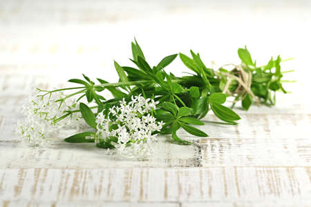 sweet woodruff: bunch of woodruff on wooden background Stock Photo