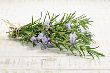 herbary: bunch of rosemary on wooden background