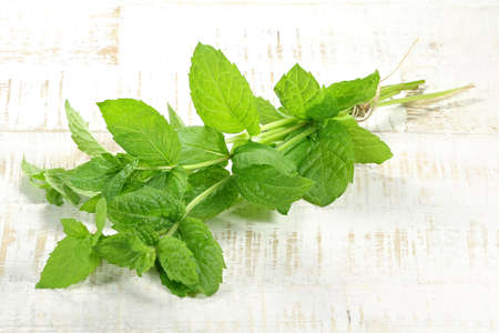 herbary: bunch of peppermint on wooden background
