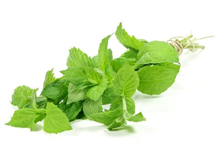 herbary: bunch of peppermint isolated on white background Stock Photo
