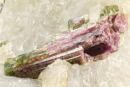 rubellite: watermelon tourmaline on quartz matrix found in Brazil Stock Photo