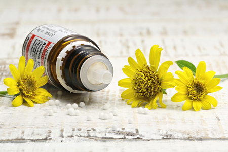arnica: scattered homeopathic arnica pills on wooden background