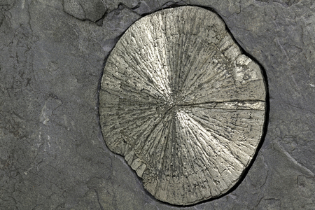 artefacts: pyrite sun in anthracite coal shale matrix found in Illinois