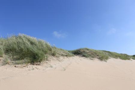Dünen an der niederländischen Nordseeküste