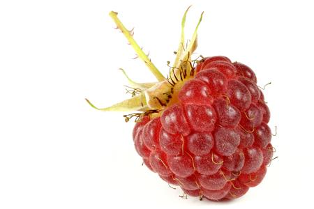 fresh picked raspberry isolated on white background