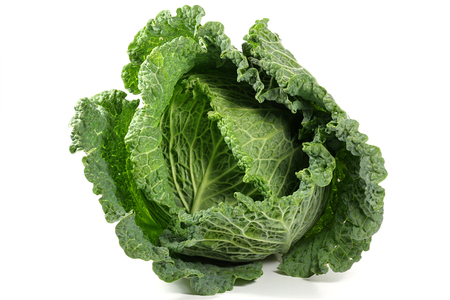 savoy cabbage from organic farming isolated on white background