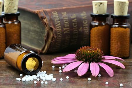 soustředění: homeopatické Echinacea pilulky na dřevěném pozadí
