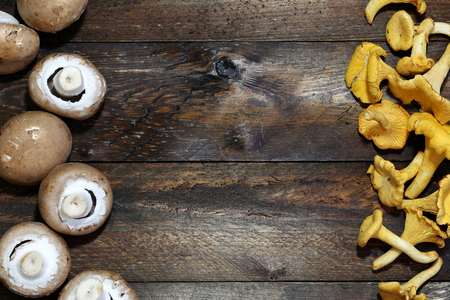 proto: proto bello mushrooms and chanterelles on wooden boards for background use