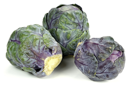 purple Brussels sprout isolated on white background