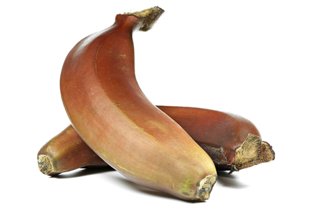 mellowness: red bananas isolated on white background Stock Photo