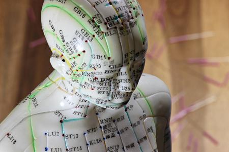 Vrouwelijke acupunctuurmodel op bureaublad