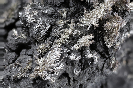 close up of dignified silver from Pohla (Ore Mountains  Germany)
