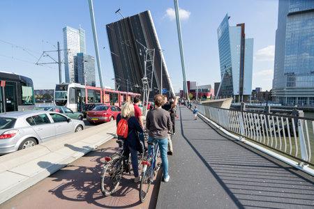 에라스무스 브루 크 (Erasmusbrug) (에라스무스 다리 (Erasmus Bridge))의 솟아 오른 바닥 단면. Erasmusbrug은 네덜란드 로테르담 (Rotterdam)의 중심에있는 케이블로