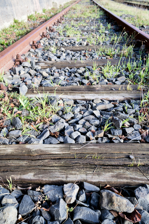rusty rails with wooden sleepers and encroaching vegetation Stock Photo