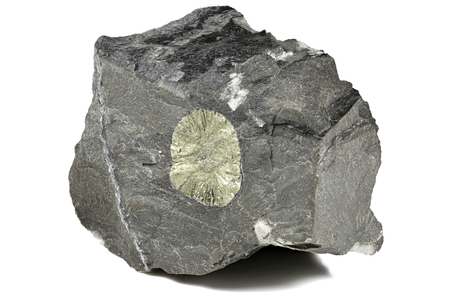 pyrite sun in matrix from Hohenems Austria isolated on white background Stock Photo