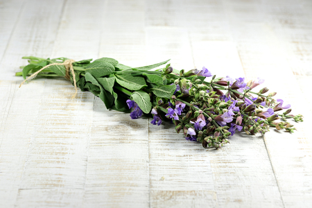 bunch of sage on wooden background Stock Photo