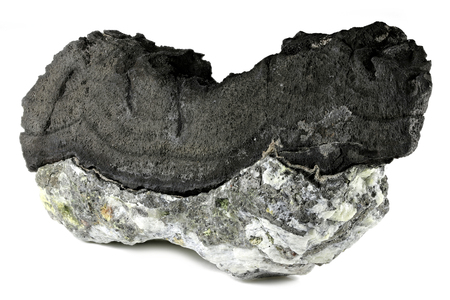 native arsenic on barite from Oberschlema Ore Mountains, Germany isolated on white background Stock Photo