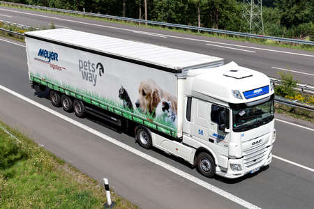 Meyer Logistics DAF XF truck with curtainside trailer on motorway.