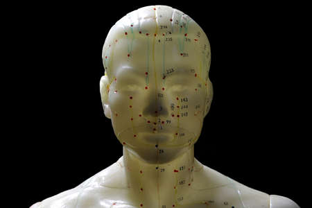male acupuncture model against black background