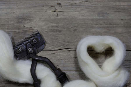 raw wool from the Dutch island of Texel forming a heart on wooden background