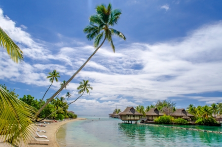 bask: Overwater Bungalows, tropical beach, French Polynesia Stock Photo