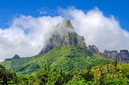 Mountain Top in the clouds, tropical forest, French Polynesia