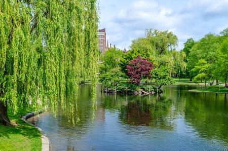 Boston Public Garden op een zonnige dag