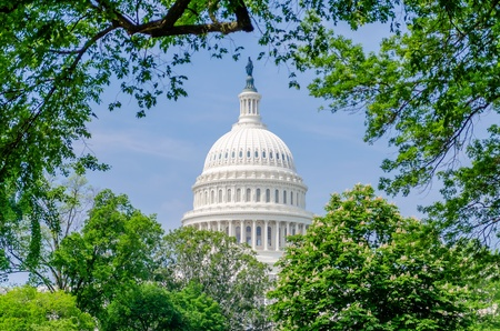 United States Capitol building, dome surrounded by trees, Washington DC, USA photo