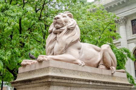 Lion Statue in front of The New York City Public Library Exterior