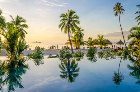 french: Palms reflecting on an infinity pool on the beach in Moorea, French Polynesia
