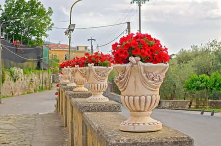 Ornate Vases With Red Flowers On A Public Square In Massa Lubrense