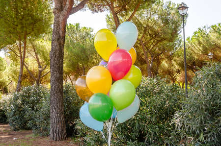 helium: Colorful bunch of helium balloons in a public park Stock Photo