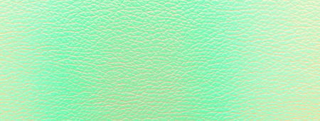 Close-up of a leather green texture used for background