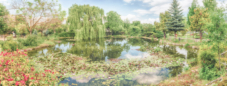 Defocused background with an idillic small pond in the forest. Intentionally blurred post production for bokeh effect