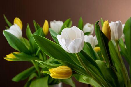 Postcard of flowers for women on celebration. Mothers day, international womens day, birthday... Banco de Imagens - 147056016