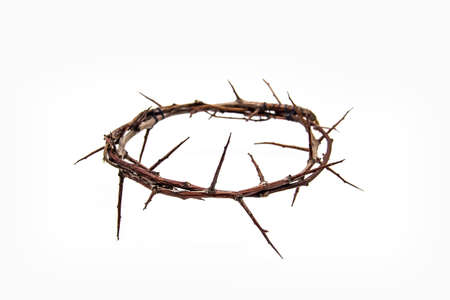 A crown of thorns on a white background. Conceptual phototo use in the design. A wreath of branches with thorns Standard-Bild