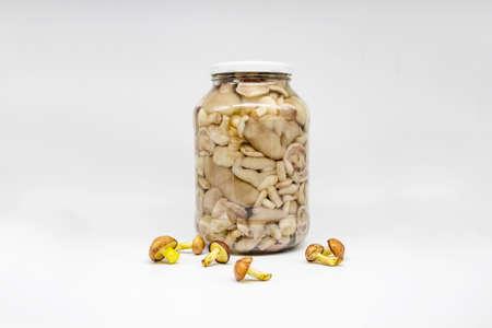 Pickled butter mushrooms in a jar.